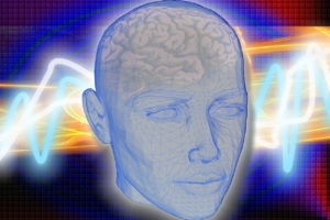 medical illustration human head transparency showing brain