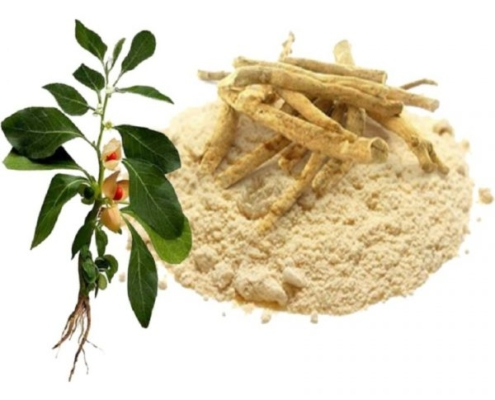 wshwagandha powder, root, and sketch of plant