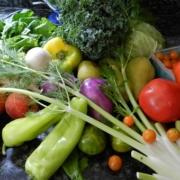 variety of fresh fruits and veggies